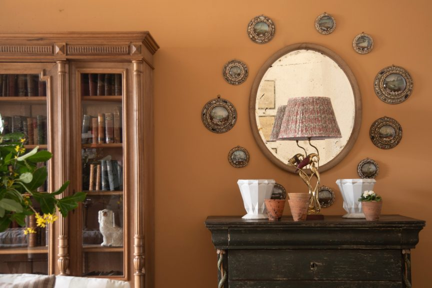 Seashell diorama collection, antique bookcase, English country house