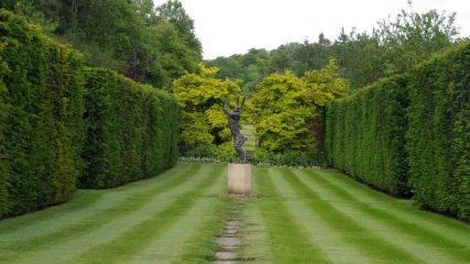 Using hedges to bring attitude to your garden